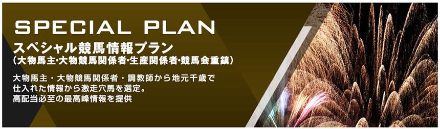 SPECIAL PLAN(スペシャルプラン)