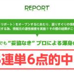 競馬予想サイト リポート(REPORT)