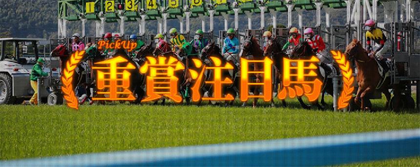 競馬予想サイト ターフビジョン 重賞注目馬
