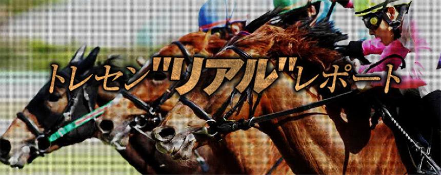 """競馬予想サイト ターフビジョン トレセン"""" リアル """"レポート"""